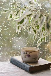 rainy5